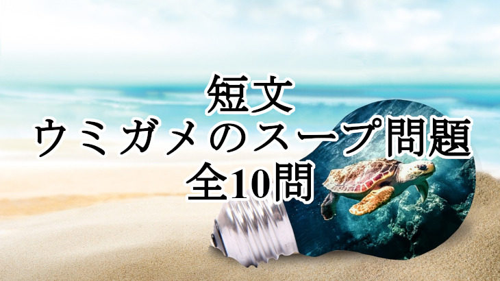 ウミガメのスープ問題(短文・全10問)