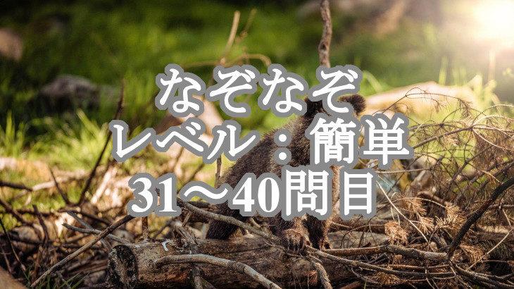 【なぞなぞ】森のクマさんを探すにはどうすれば良い?(他31~40問)